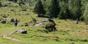 Randonnées Tarbes Lourdes